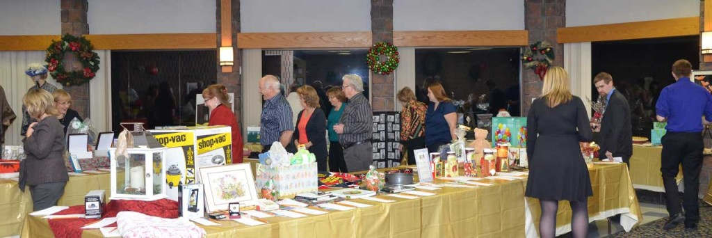 2013-Auction-DSC_5069